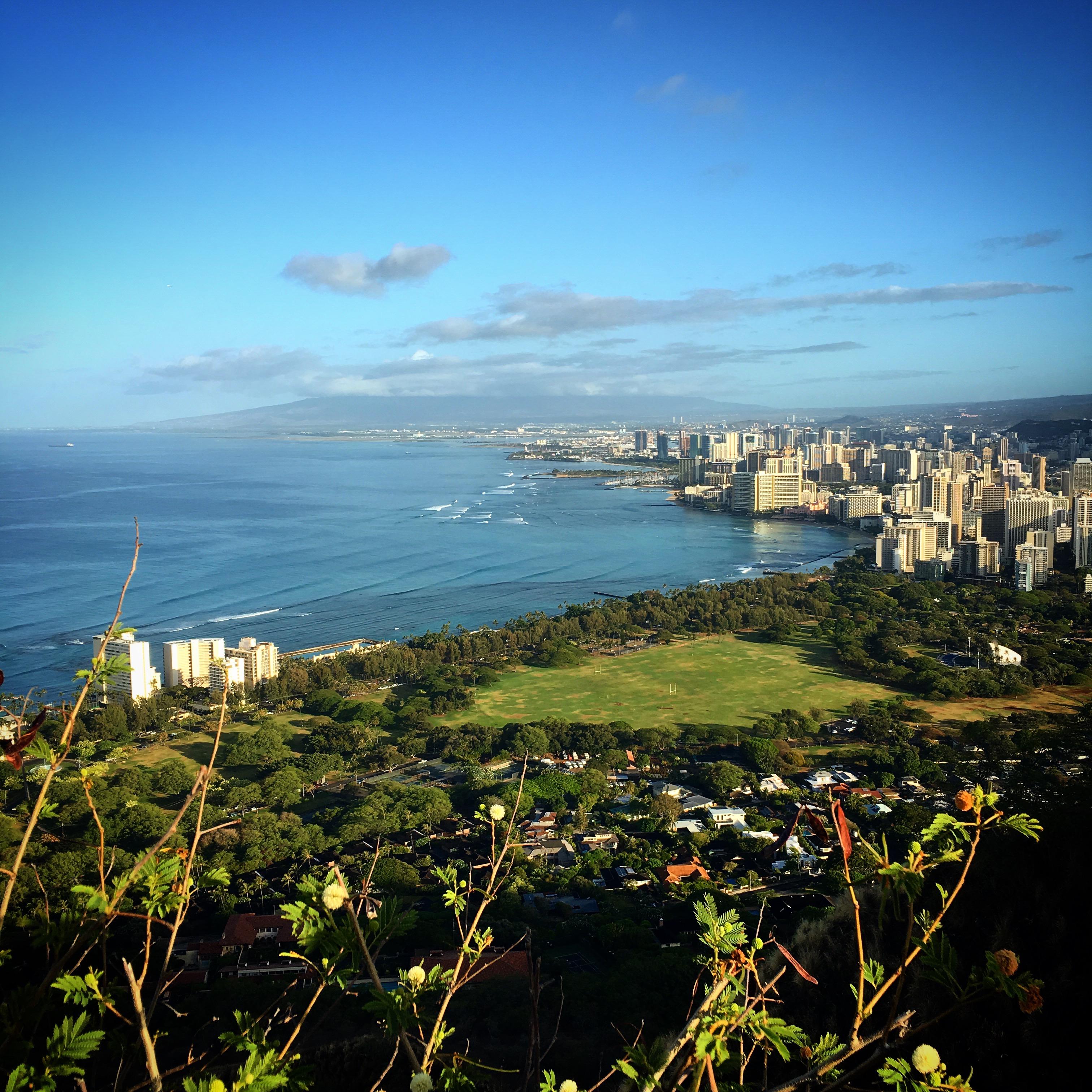 Waikiki from Diamond Head 2
